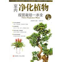 室内净化植物:观赏栽培一本全