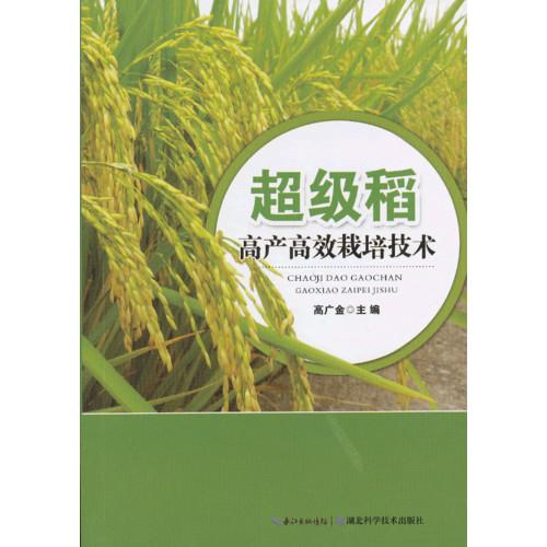 超级稻高产高效栽培技术