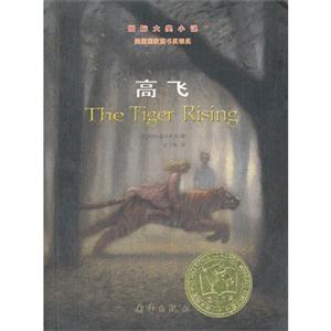 国际大奖小说 高飞