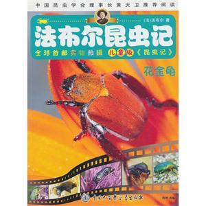 花金龟-法布尔昆虫记