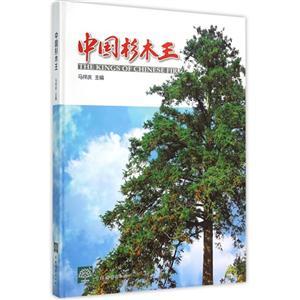 中国杉木王