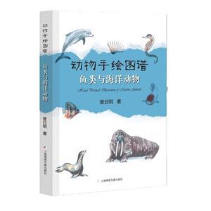 鱼类与海洋动物-动物手绘图谱