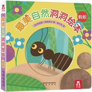 《蚂蚁-最美自然洞洞绘本》【价格 目录 书评 正版】图片