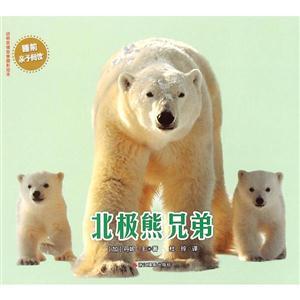 北极熊兄弟