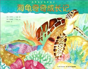 海龟奇奇成长记