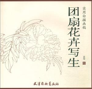 实用白描画稿团扇花卉写生