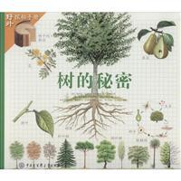 树的秘密-野外探秘手册