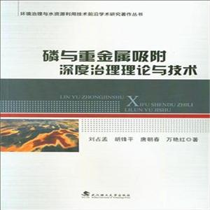 磷与重金属吸附深度治理理论与技术磷与重金属吸附深度治理理论与技术