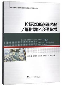 垃圾渗滤液磁混凝/催化氧化治理技术