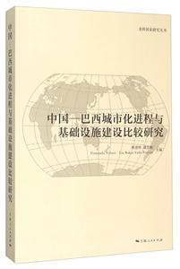 中国―巴西城市化进程与基础设施建设比较研究