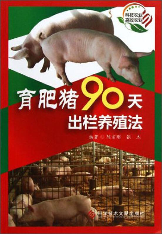 育肥猪90天出栏养殖法